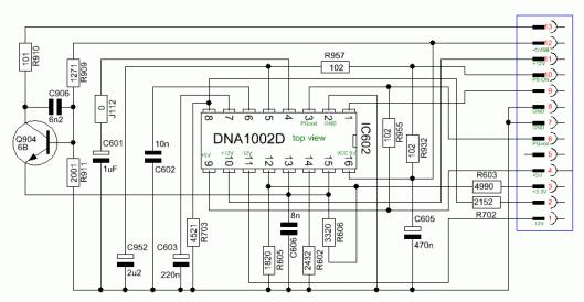 DNA1002D